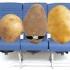 Η Boeing δοκιμάζει την επίδραση του WiFi σε πτήσεις με πατάτες ως υποκατάστατο ανθρώπων