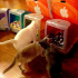 Σπίτια για γάτες με design της Apple